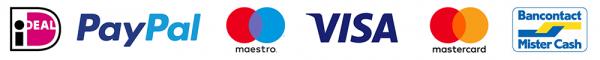 logo-betalgingen